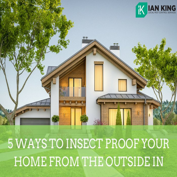 5 Ways to Insect Proof Your Home from The Outside In
